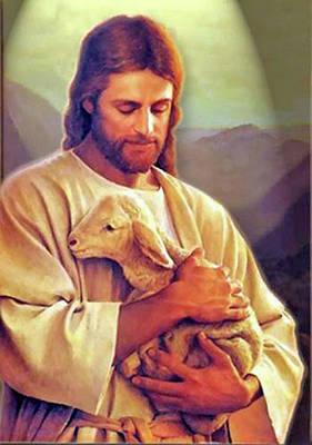 Photograph - The Lamb Of God by Jay Milo