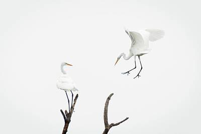 Summer Photograph - The Landing by Benjamin DeHaven