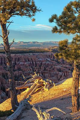 Photograph - The Landscape At Bryce Canyon by Jonathan Nguyen