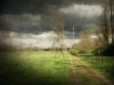 Photograph - The Lane At Angustown Farm by Cynthia Lassiter
