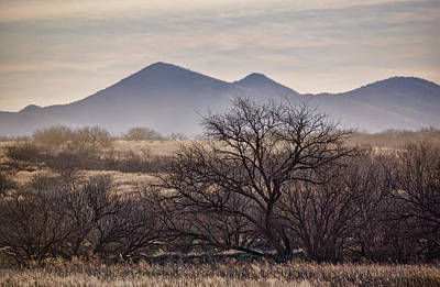 Photograph - The Las Guijas Mountains by Saija Lehtonen
