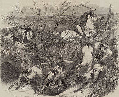 Horse Drawing - The Last Fox Of The Season by English School