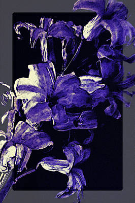 Photograph - The Last Hyacinth by Susan Maxwell Schmidt