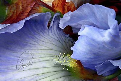 The Last Iris Art Print