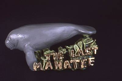 Ceramic Art - The Last Manatee by Frederick Dost