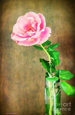 Photograph - The Last One Rose by Roberta Byram