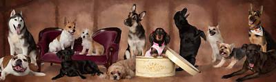 Labs Digital Art - The Last Pupper by Angel Pachkowski