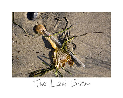 Photograph - The Last Straw by Peter Tellone