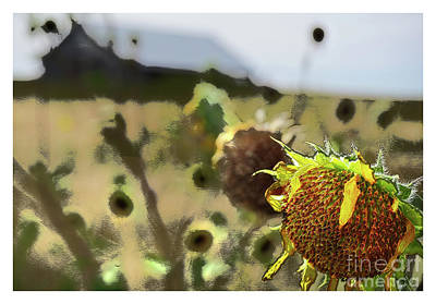 Digital Art - The Last Sunflower by Deborah Nakano