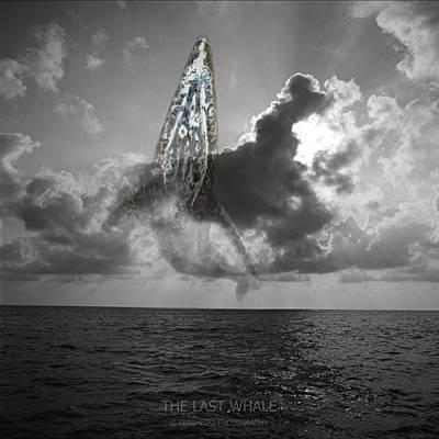 The Last Whale Art Print by Andy Frasheski