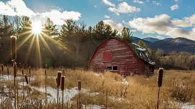 Photograph - The Last Winter by Brad Wenskoski