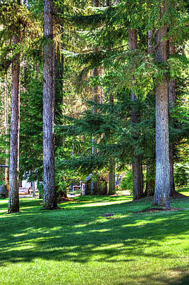 Photograph - The Lawn At Hill's Resort by David Patterson
