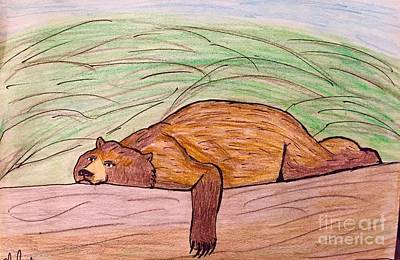 Animals Drawings - The Lazy Bear by Shylee Charlton