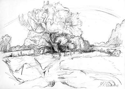 Country Schools Drawing - The Leaning Trees by Maxine Cameron