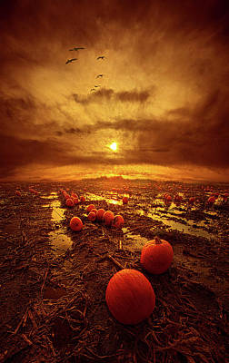 Photograph - The Left Overs by Phil Koch