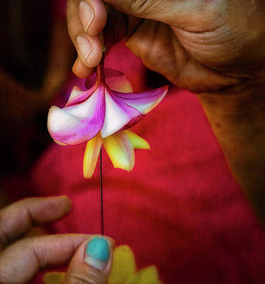 Photograph - The Lei Maker's Hands by Jade Moon