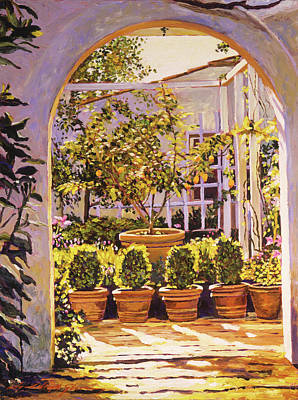 Painting - The Lemon Tree Courtyard by David Lloyd Glover