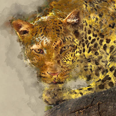 Manipulation Photograph - The Leopard by Ericamaxine Price