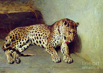 Cheetah Painting - The Leopard by John Sargent Noble
