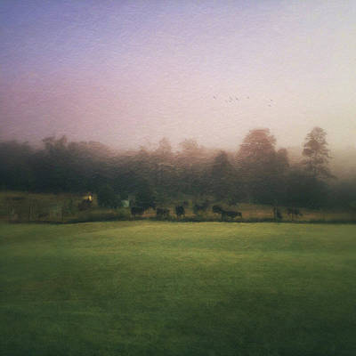 Photograph - The Lifting Of Morning Fog by Melissa D Johnston
