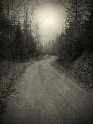 Photograph - The Light At The End Of The Road by Tara Turner