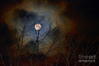 Photograph - The Light Of The Moon by Lila Fisher-Wenzel