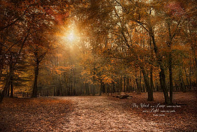 Photograph - The Light by Robin-Lee Vieira