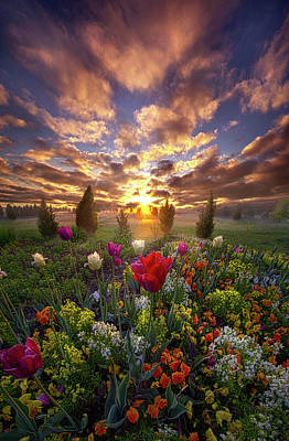 Photograph - The Light That Shines Our Way Home by Phil Koch