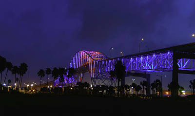 Photograph - The Lights Of Harbor Bridge by Leticia Latocki