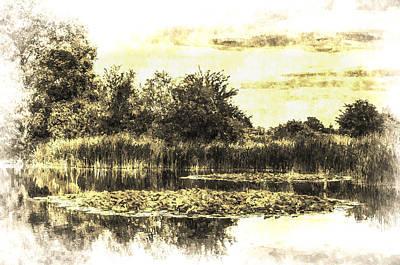 Photograph - The Lily Pond Vintage by David Pyatt