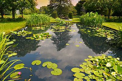 Photograph - The Lily Pool by Diana Angstadt