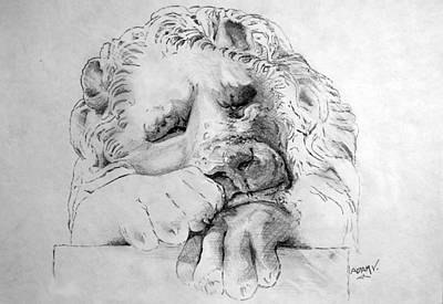 Animals Drawings - The Lion by Adam Vance