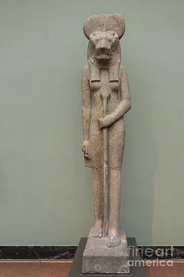 Photograph - The Lion Goddess Sekhmet. by Patricia Hofmeester