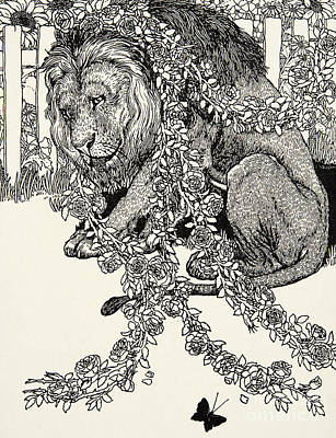 Sunflowers Drawing - The Lion In Love, From A Hundred Fables Of Aesop by Percy J Billinghurst