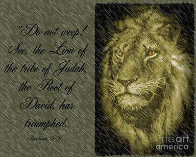 Photograph - The Lion Of Judah by Leticia Latocki
