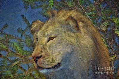 Photograph - The Lion by Ray Shrewsberry