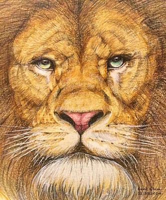 Color Pencil Drawing - The Lion Roar Of Freedom by Kent Chua