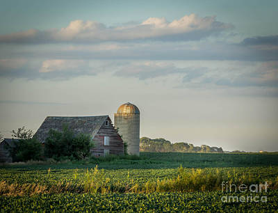 Lisa Phillips Photograph - The Little Barn by Lisa Phillips