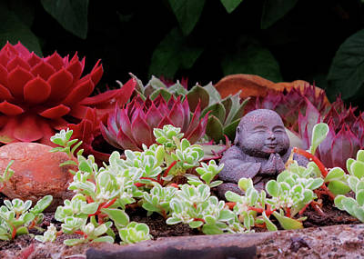 Photograph - The Little Buddha by Jacqueline  DiAnne Wasson