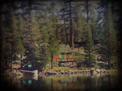 Pine Trees Photograph - The Little Cabin by Laurie Search