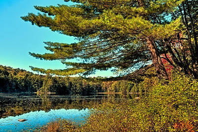 Photograph - The Little Known Cary Lake by David Patterson