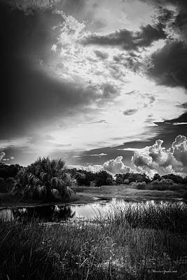 The Little Pond Art Print by Marvin Spates