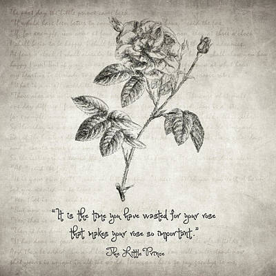 Drawing - The Little Prince Rose Quote by Taylan Apukovska