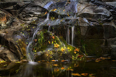 Fallen Leaf Photograph - The Little Waterfall  by Saija  Lehtonen