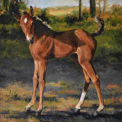 Baby Horse Painting - The Littlest Mustang by Tracie Thompson