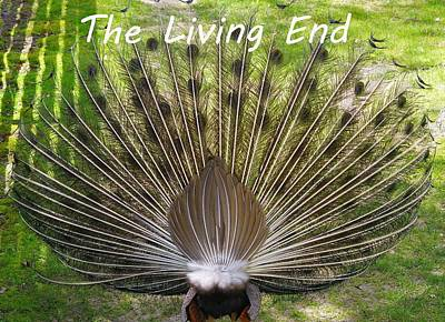 The Living End Art Print