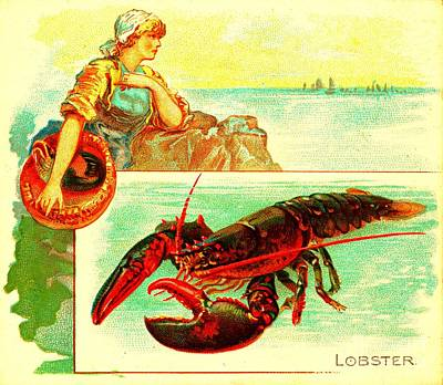 Painting - The Lobster Allen And Ginter Cigarettes Tobacco Card 1880s by Peter Ogden Collection