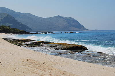 Photograph - The Local's Beach by Amee Cave