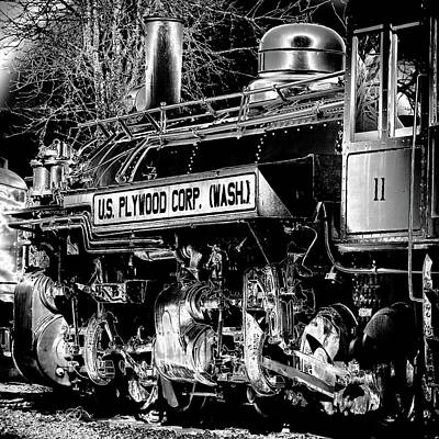 Photograph - The Locomotive by David Patterson