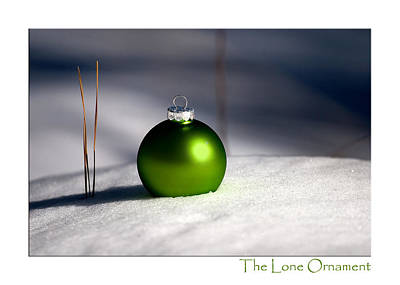 Photograph - The Lone Ornament - 3rd Edition by Peter Tellone